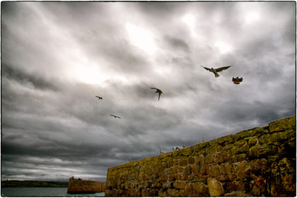 Mousehole Harbour - Gerry Atkinson