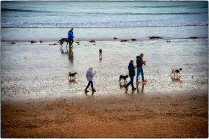 Dusk Dog walkers, Penzance - Gerry Atkinson