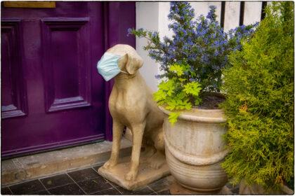 Pimlico Humour- Gerry Atkinson