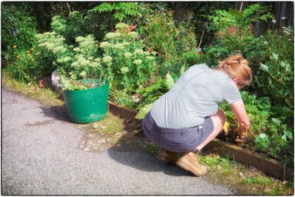 Guerilla Gardening Whitstable - Gerry Atkinson
